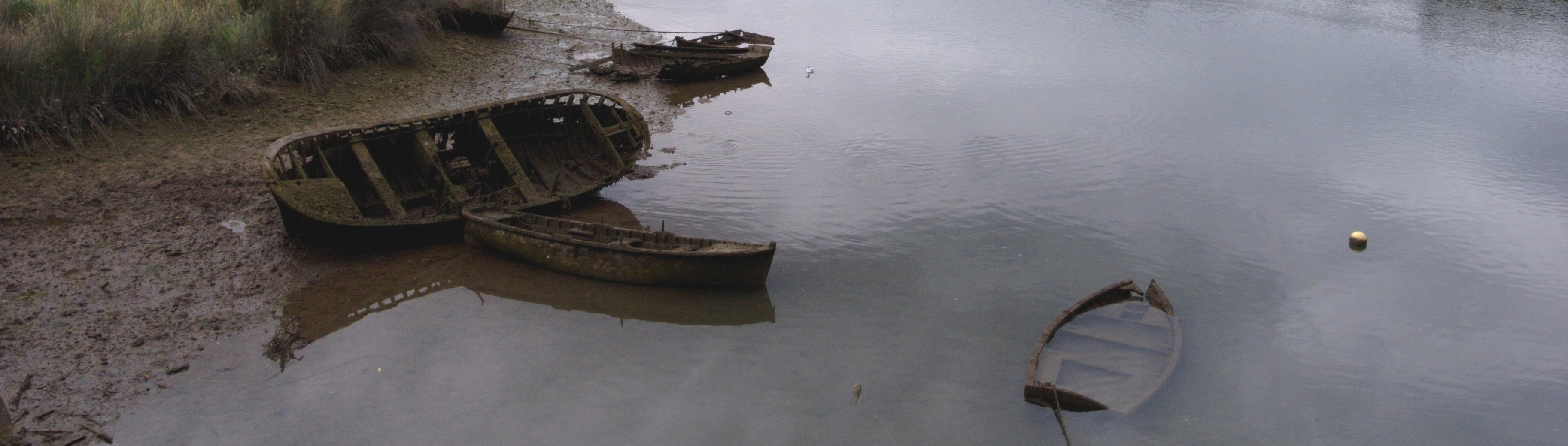 Photograph of a 		      couple of sunken boats
